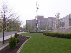 städtische_grünfläche